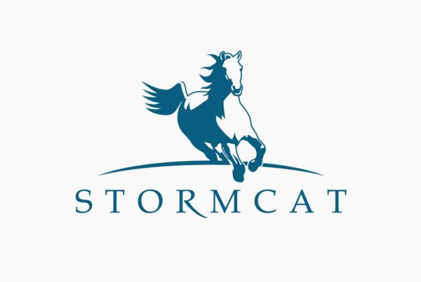 Stormcat Logo by HCD